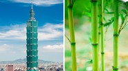 8 kiệt tác kiến trúc khó tin lấy cảm hứng từ thiên nhiên