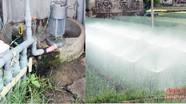 Nông dân vùng bãi ngang khai thác nước ngầm phục vụ sản xuất