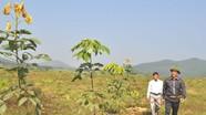5 năm thực hiện chi trả dịch vụ môi trường rừng