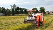 'Bảo kê' máy gặt lúa, lĩnh 16 tháng tù giam