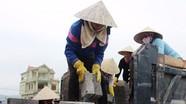 Nhộn nhịp làng nghề gạch không nung ở Quỳnh Văn
