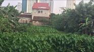 Cử tri thành phố Vinh kiến nghị tăng cường kiểm soát các hoạt động xả thải