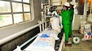 Nhà máy Mía đường Sông Lam phấn đấu đạt sản lượng ép 120 nghìn tấn/vụ