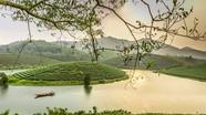 Nghệ An: Hơn 1.500 tỷ đồng đầu tư khu du lịch, nghỉ dưỡng ở đảo chè Cầu Cau