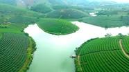 Phát triển nóng, đảo chè 'đẹp nhất Việt Nam' ế thuyền