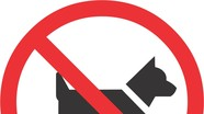 Lạ: Xã hơn nửa thế kỷ 'nói không' với việc nuôi chó
