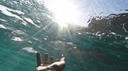 Những sai lầm tuyệt đối tránh khi sơ cứu người bị đuối nước