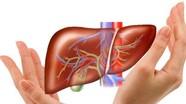 Nóng bức – làm gì để giải nhiệt cho gan?