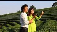 Ca sỹ Tuấn Vỹ tung MV hát cùng fan trên đảo chè Nghệ An