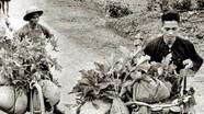 Kỳ tích của hơn 2 vạn xe đạp trong chiến dịch Điện Biên Phủ