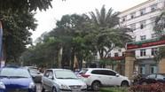 Thành phố Vinh cho dân đậu xe trên vỉa hè từ 10h đêm đến 6h sáng