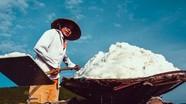 Diêm dân Nghệ An bỏng rát trên cánh đồng muối