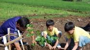 5 bài học về bảo vệ môi trường cần dạy trẻ