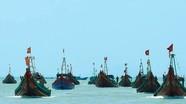 Hối hả dưới nắng nóng nơi cảng cá Lạch Vạn