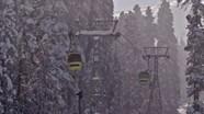 Đứt cáp treo cao nhất thế giới, ít nhất 7 người chết