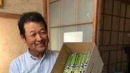 Nhật Bản sản xuất rau an toàn bằng cả trái tim