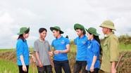 Trí thức trẻ tình nguyện Đoàn 4 góp phần xây dựng kinh tế vùng biên