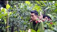 'Phan Hải' Việt Anh lần đầu được đóng vai cảnh sát điều tra