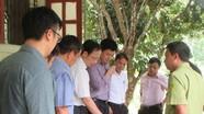 Tập đoàn TH khảo sát trồng dược liệu kết hợp phát triển du lịch tại Con Cuông