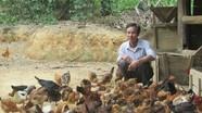 Liên kết chặt chẽ trong làm trang trại ở Tân Kỳ