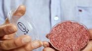 Bill Gates đầu tư sản xuất thịt nhân tạo trong phòng thí nghiệm