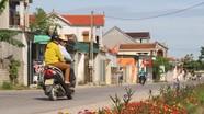 Con đường hoa hơn 1km của hội phụ nữ xã ở Nghệ An