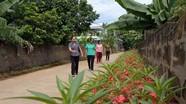 Muôn sắc đường hoa nông thôn mới ở Thái Hòa