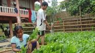Người Đan Lai ở Thạch Ngàn tập làm kinh tế