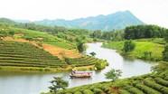 Khoảnh khắc Vàng 2017: Trên đồi chè Thanh An (Thanh Chương)