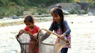 Trẻ em vùng cao xúc cá suối