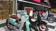 Bộ 3 xe máy 'huyền thoại' Honda Super Cub sắp ra mắt