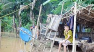 Cận cảnh cuộc sống bấp bênh của dân xóm chài ngày mưa lũ