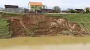 Đê sông Đào Đô Lương tiếp tục sạt lở thêm 40m