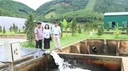 Nghệ An: 48/77 cơ sở gây ô nhiễm môi trường nghiêm trọng