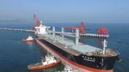 Cảng biển Vissai Nghi Thiết xuất hơn 250.000 tấn sản phẩm mỗi tháng