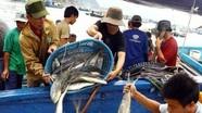 Phạt đến 1 tỷ đồng nếu làm thiệt hại đến nguồn lợi thủy sản