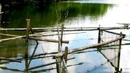 Độc chiêu bắt cá 'khủng' trên sông