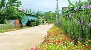 Con đường hoa ở xã Nam Đàn