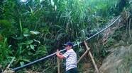 Người Mông làm đường ống cả cây số để vận chuyển lúa rẫy