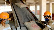 Công ty CP xi măng Sông Lam: Tăng cường kiểm định, đảm bảo chất lượng sản phẩm tốt nhất