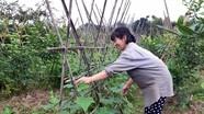 Nghệ An có 25 thôn bản đạt chuẩn nông thôn mới