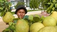 Thị trường trái cây Việt đang rất rộng mở