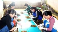 Giáo dân Rú Đất làm giàu từ nghề dịch vụ lươn đồng