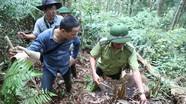 Rừng được trả kinh phí bảo vệ vẫn bị chặt phá