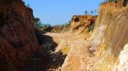 Vụ xẻ đồi, bán đất lâm nghiệp ở Yên Thành: Chính quyền ở đâu?