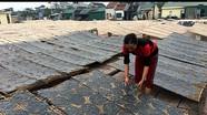 Bánh đa làng nghề 300 năm tuổi ở Đô Lương 'xuất khẩu' nhiều nước