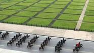 Đại biểu Quốc hội dự khán buổi diễu hành của Khối Cảnh sát cơ động Kỵ binh