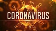 Chuyên gia Mỹ nói về thời hạn có vắc-xin chống coronavirus