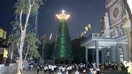 Cây thông Noel làm từ hàng nghìn khẩu trang, đỉnh là chiếc ấm sắc thuốc khổng lồ ở Nghệ An
