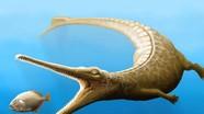 """Phát hiện hóa thạch của """"con lai"""" giữa cá sấu và cá heo cổ đại"""